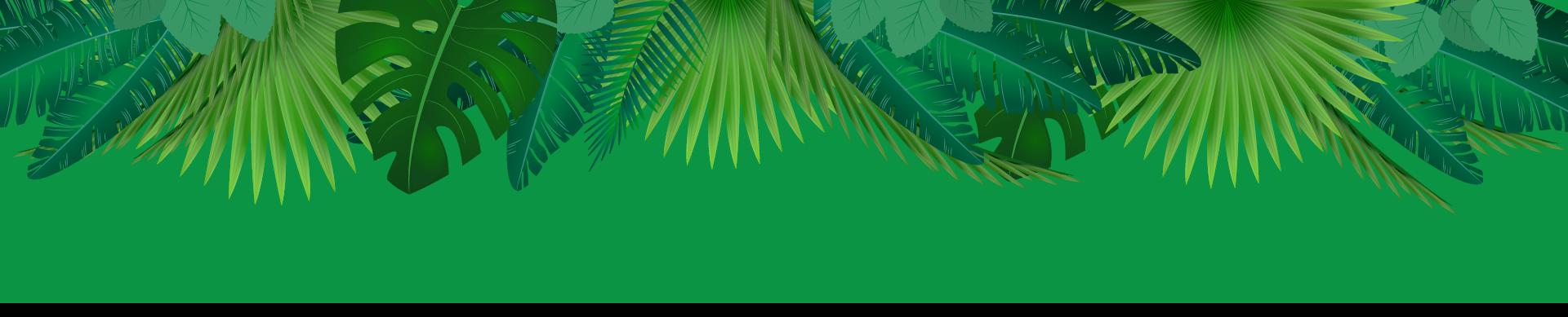 Palm children s dental. Jungle border png