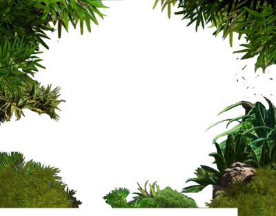 Transparent image mart. Jungle border png