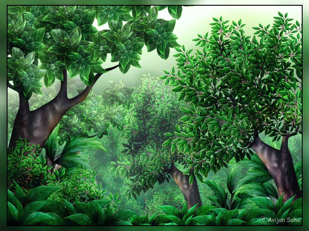 Clipartix . Jungle clipart