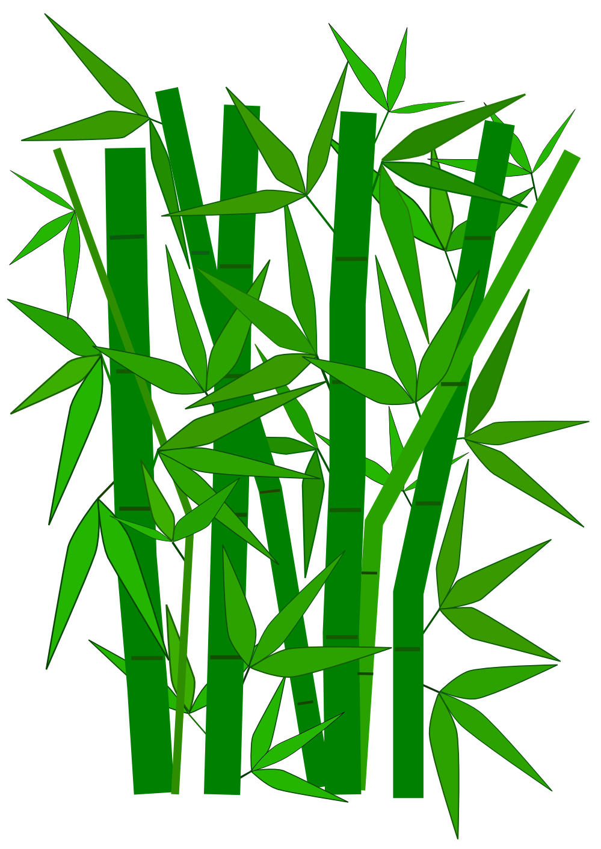 Panda free images bambooclipart. Bamboo clipart bamboo grass