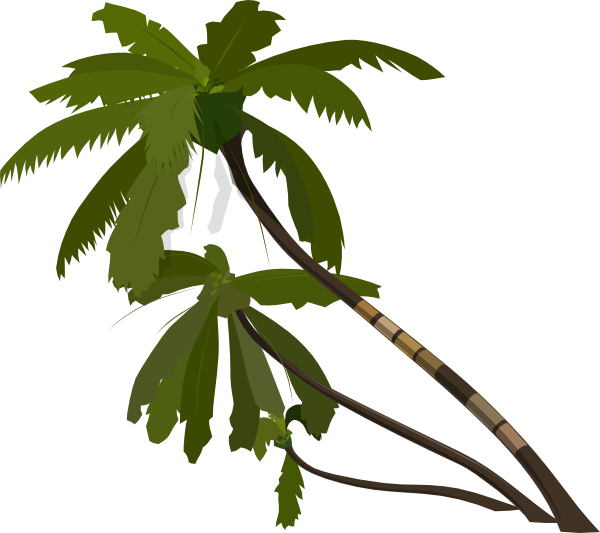 Tree clipart zoo. Jungle silhouette at getdrawings
