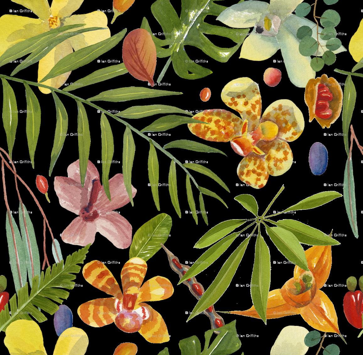Jungle clipart flora and fauna. Tropical leaves wallpaper parrots