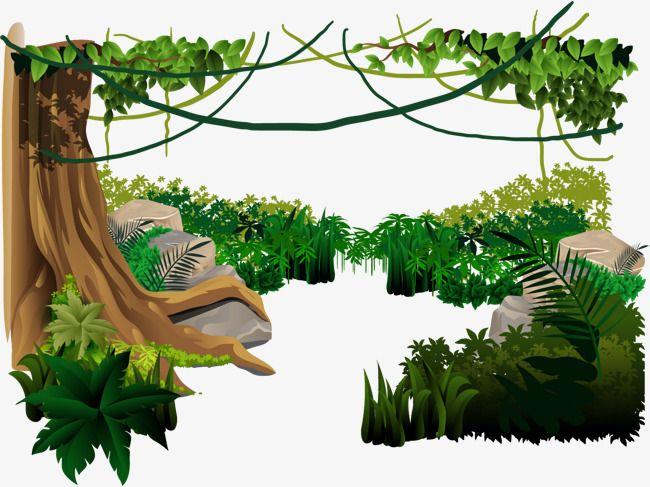Jungle clipart forest amazon. Rainforest png transparent image