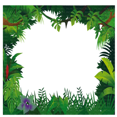 Jungle clipart frame. Free cliparts frames download
