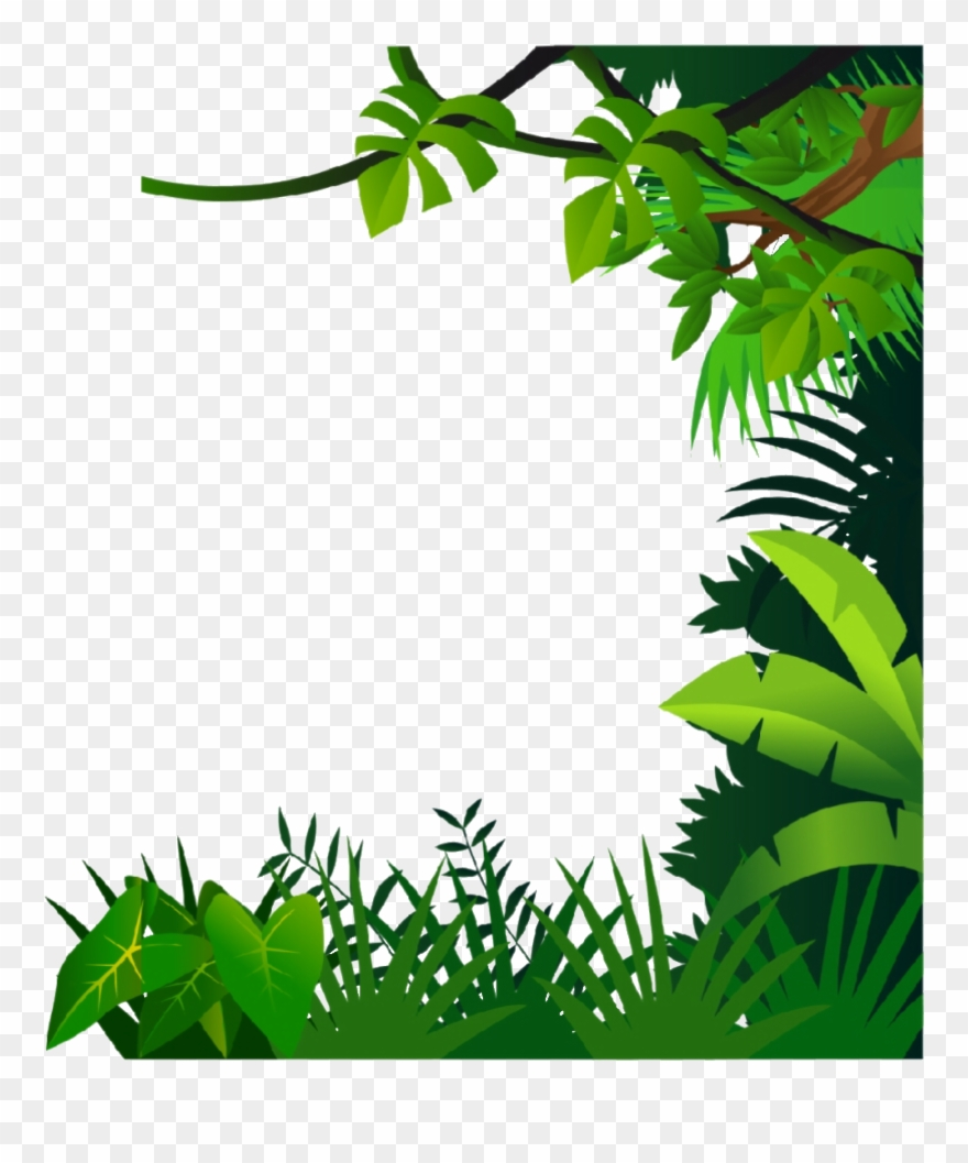 Jungle clipart frame. Png download pinclipart