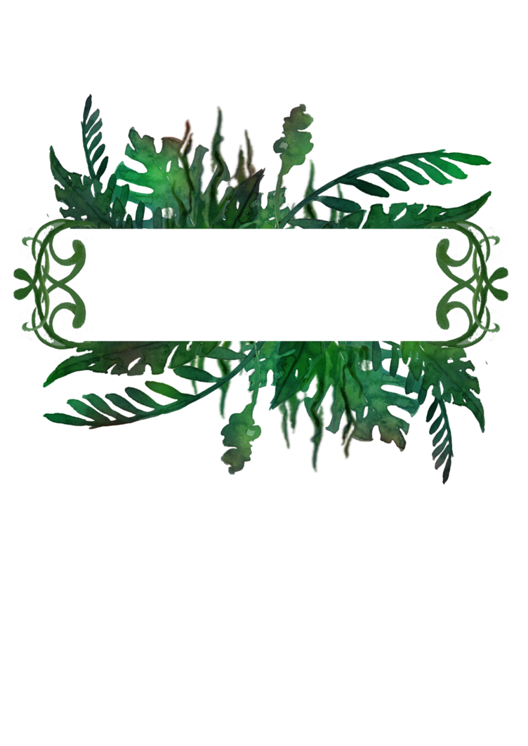 Jungle clipart frame.  by tigers stock