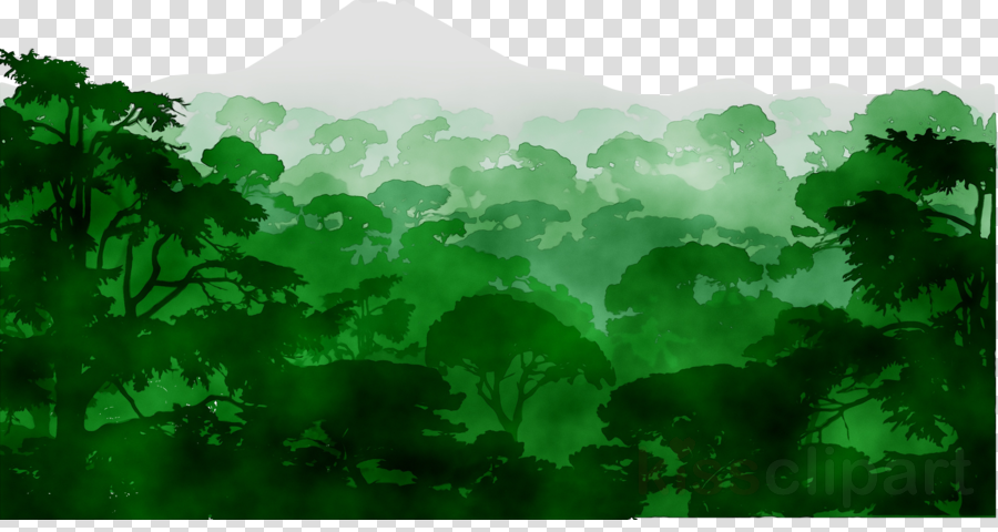 Watercolor nature background green. Rainforest clipart natural environment