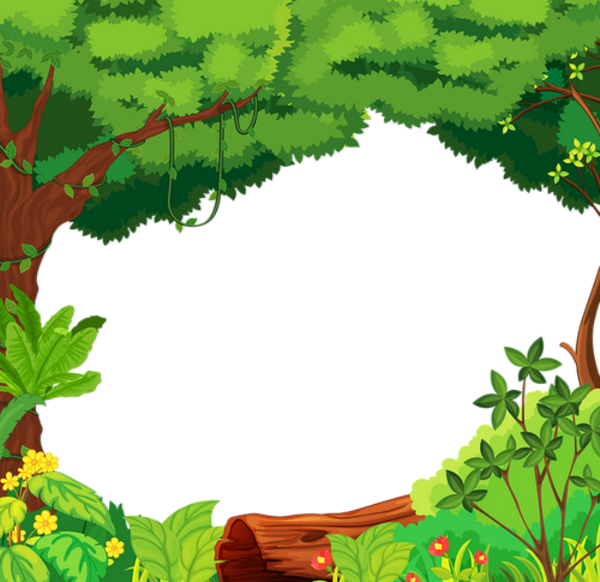 Jungle clipart nature frame. Image du blog zezete