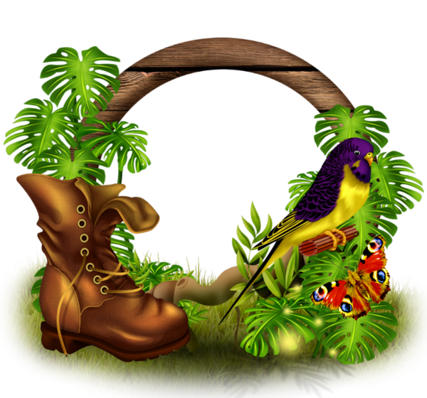 Cadres rahmen quadro png. Jungle clipart nature frame