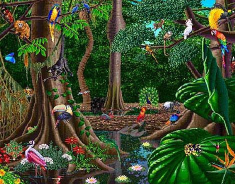 Biome clip art free. Rainforest clipart rainforest habitat
