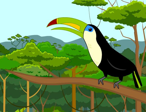 Rainforests brainpop jr . Rainforest clipart rainforest habitat