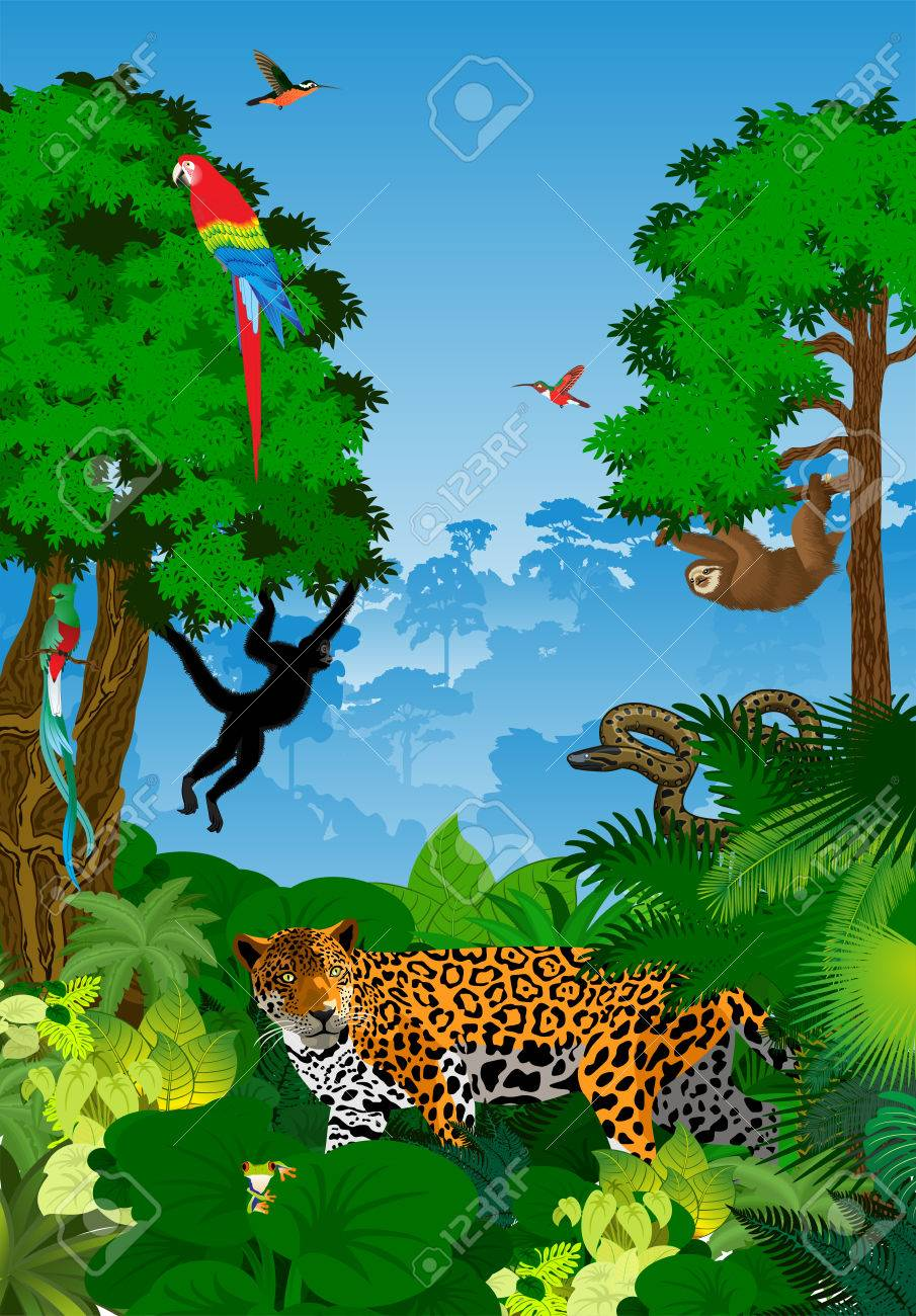 Jungle clipart rainforest ecosystem. Free download clip art