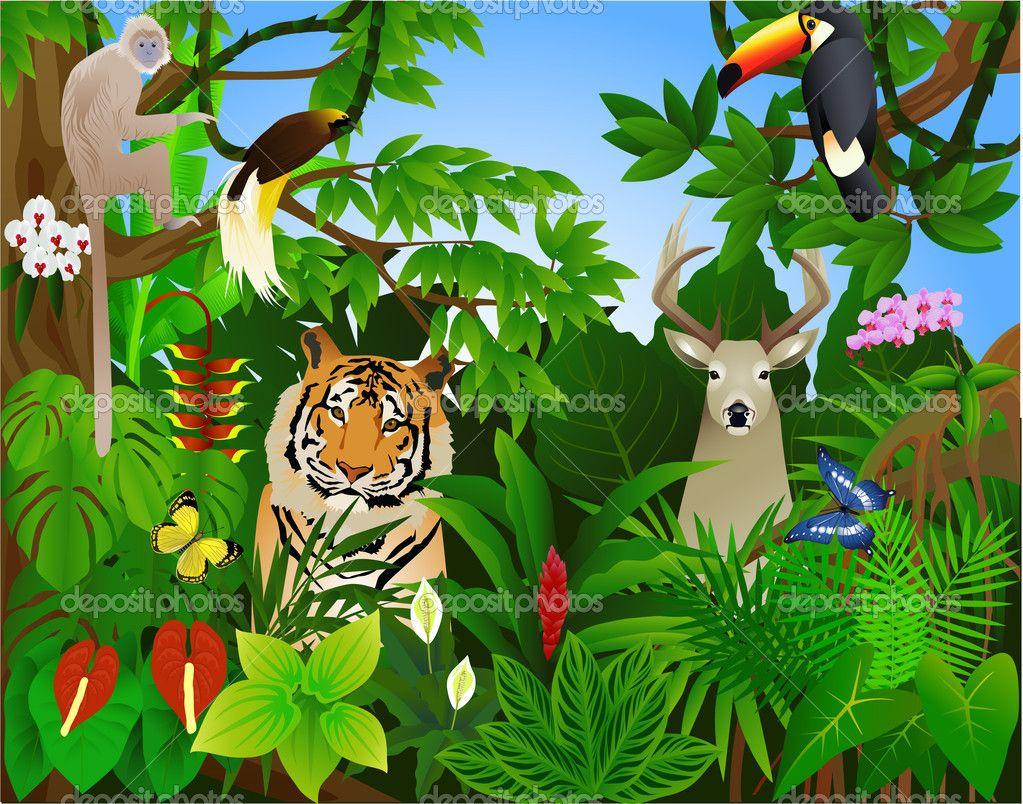 Tropical illustrations google search. Jungle clipart selva