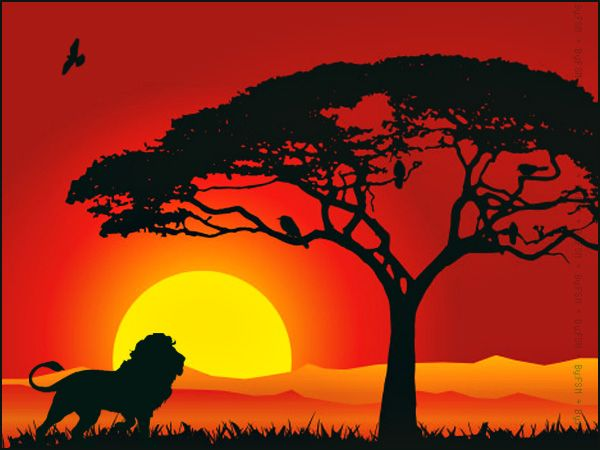 Beautiful in by fahad. Sunset clipart jungle