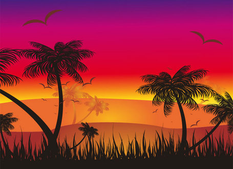 Free tropical cliparts download. Sunset clipart jungle