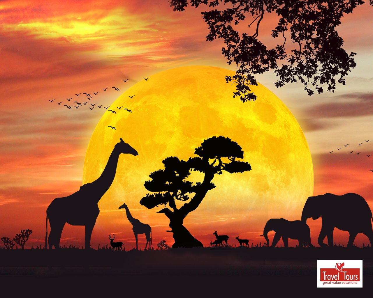 Free images safari google. Sunset clipart sunset africa