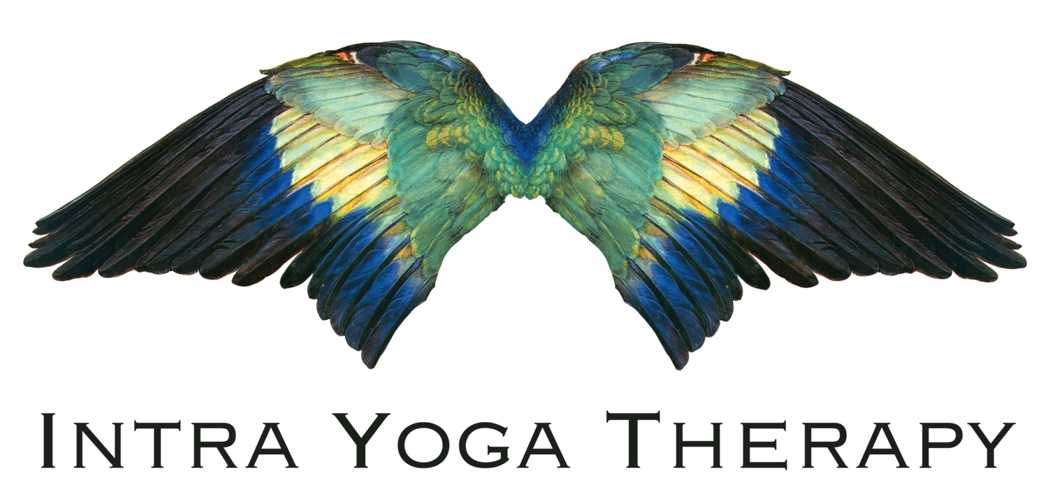 Social intra yoga therapy. Justice clipart science mass