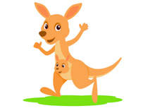Free clip art pictures. Kangaroo clipart