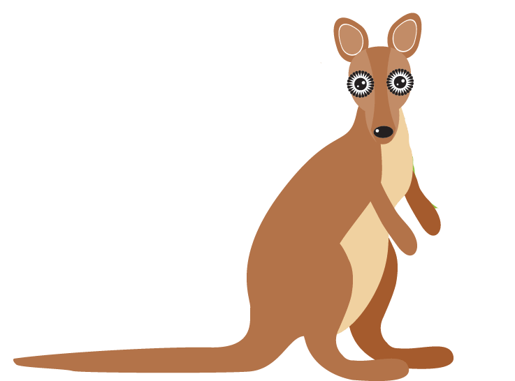 Kangaroo clipart animal australian. Animals of australia pbs