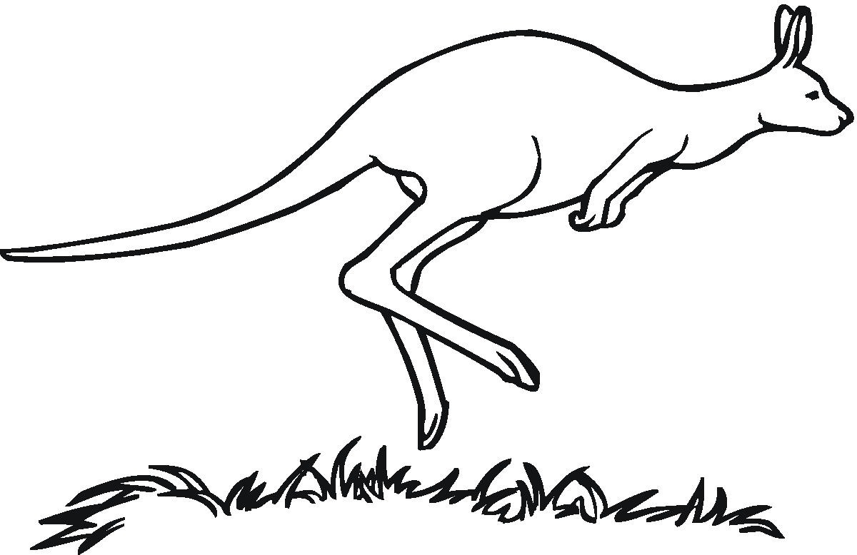 Free cliparts download clip. Kangaroo clipart black and white
