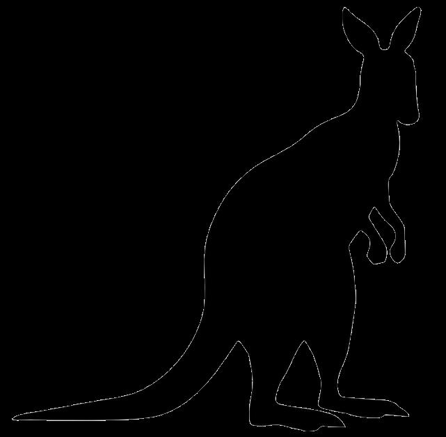 kangaroo clipart cool