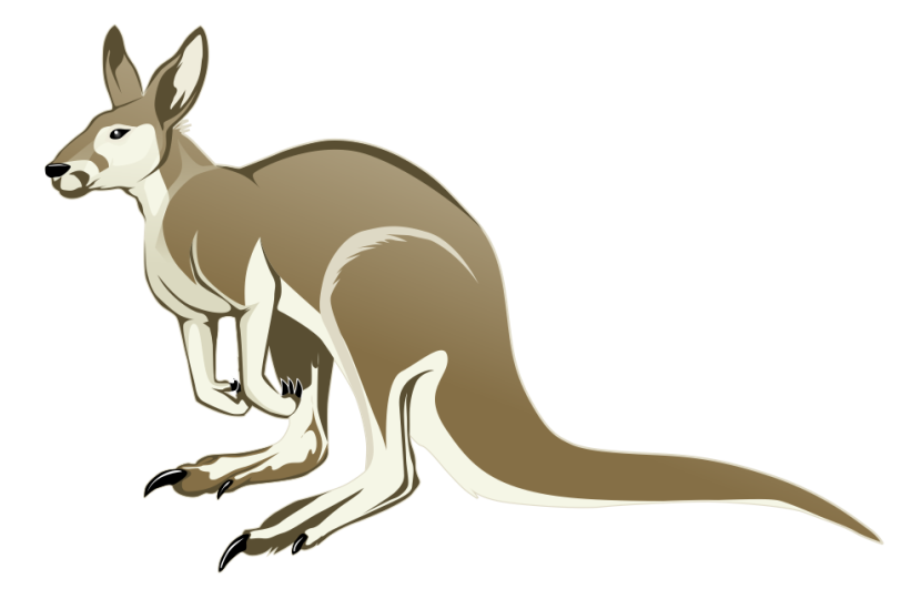 collection of transparent. Kangaroo clipart hopping