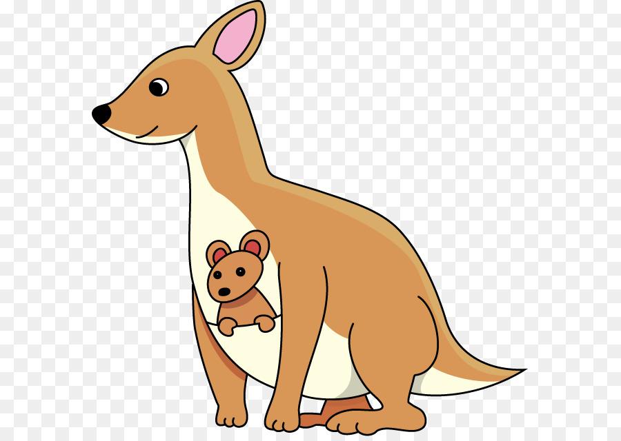 Cat and dog cartoon. Kangaroo clipart kangaroo joey