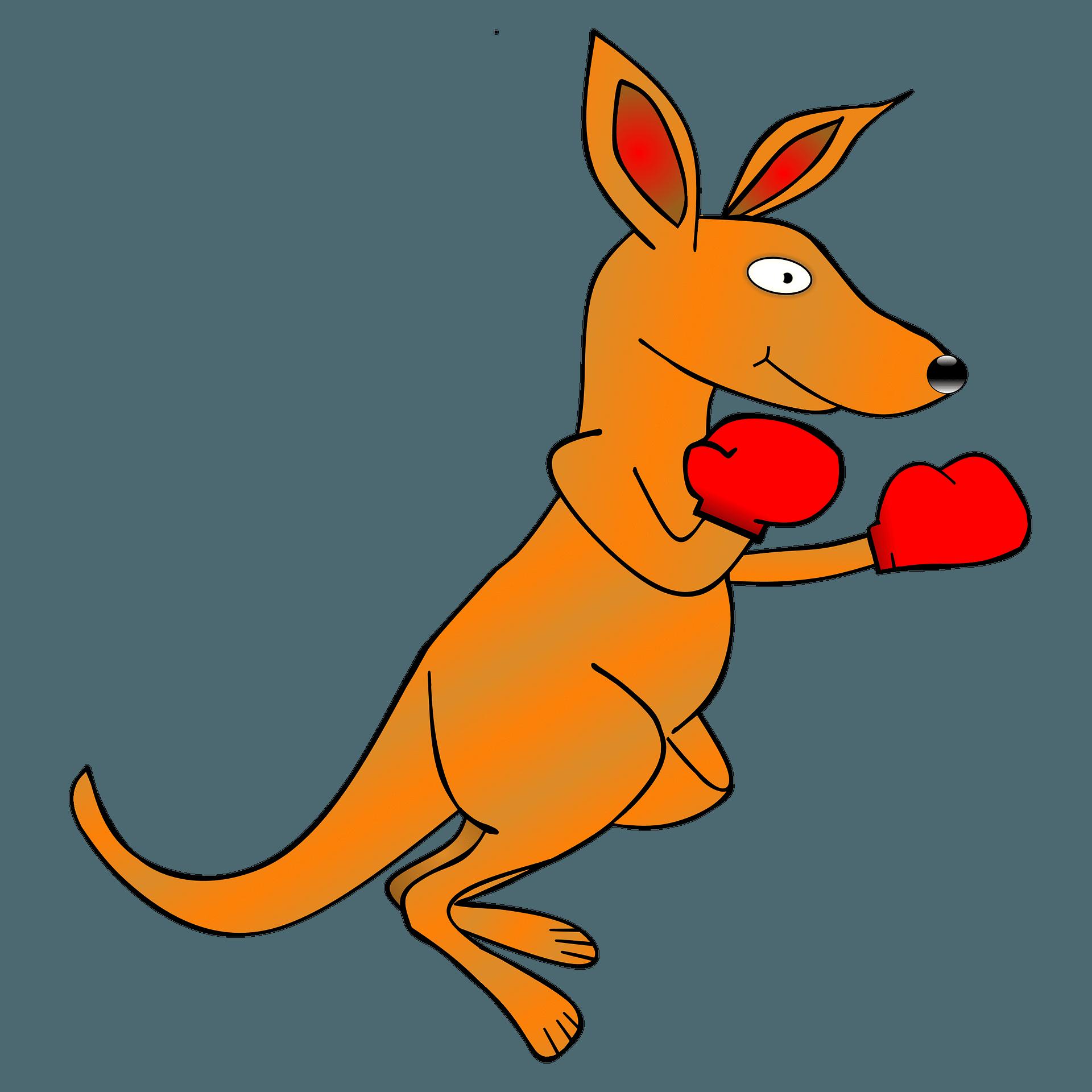 Kangaroo clipart kangaroo pouch. Kollection jerky dynasty buffalo