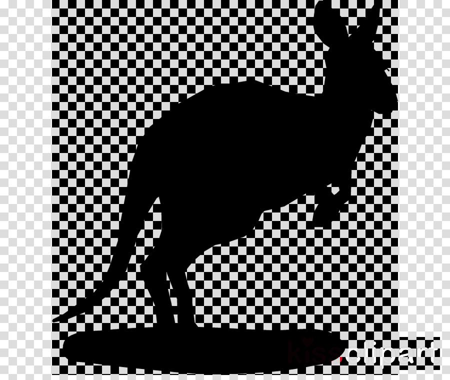 Kangaroo clipart mammal. Dog transparent png image