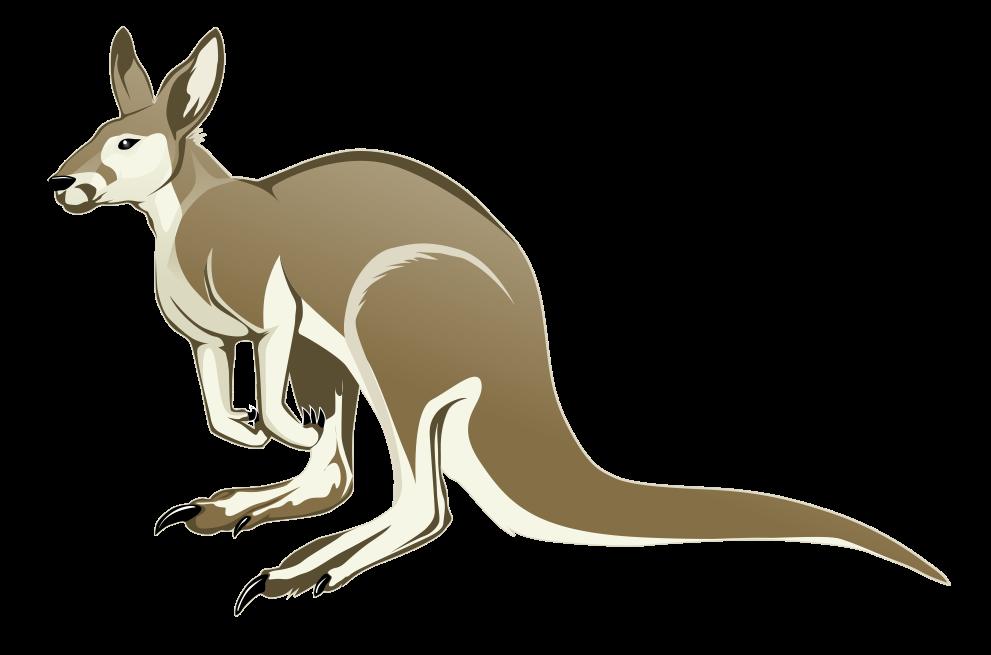 kangaroo clipart xmas