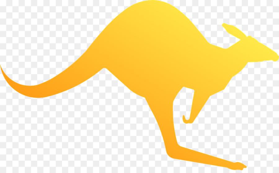 Koala png download free. Kangaroo clipart yellow