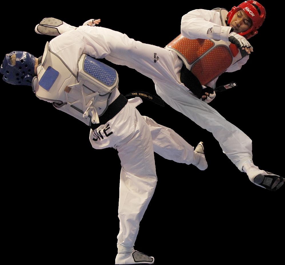 Alimenta o esportes e. Karate clipart individual sport