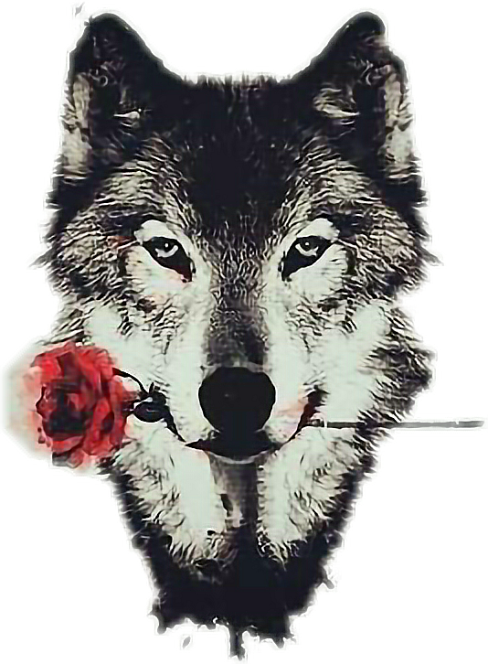 Tumblr rose animalstickers report. Wolf clipart kawaii