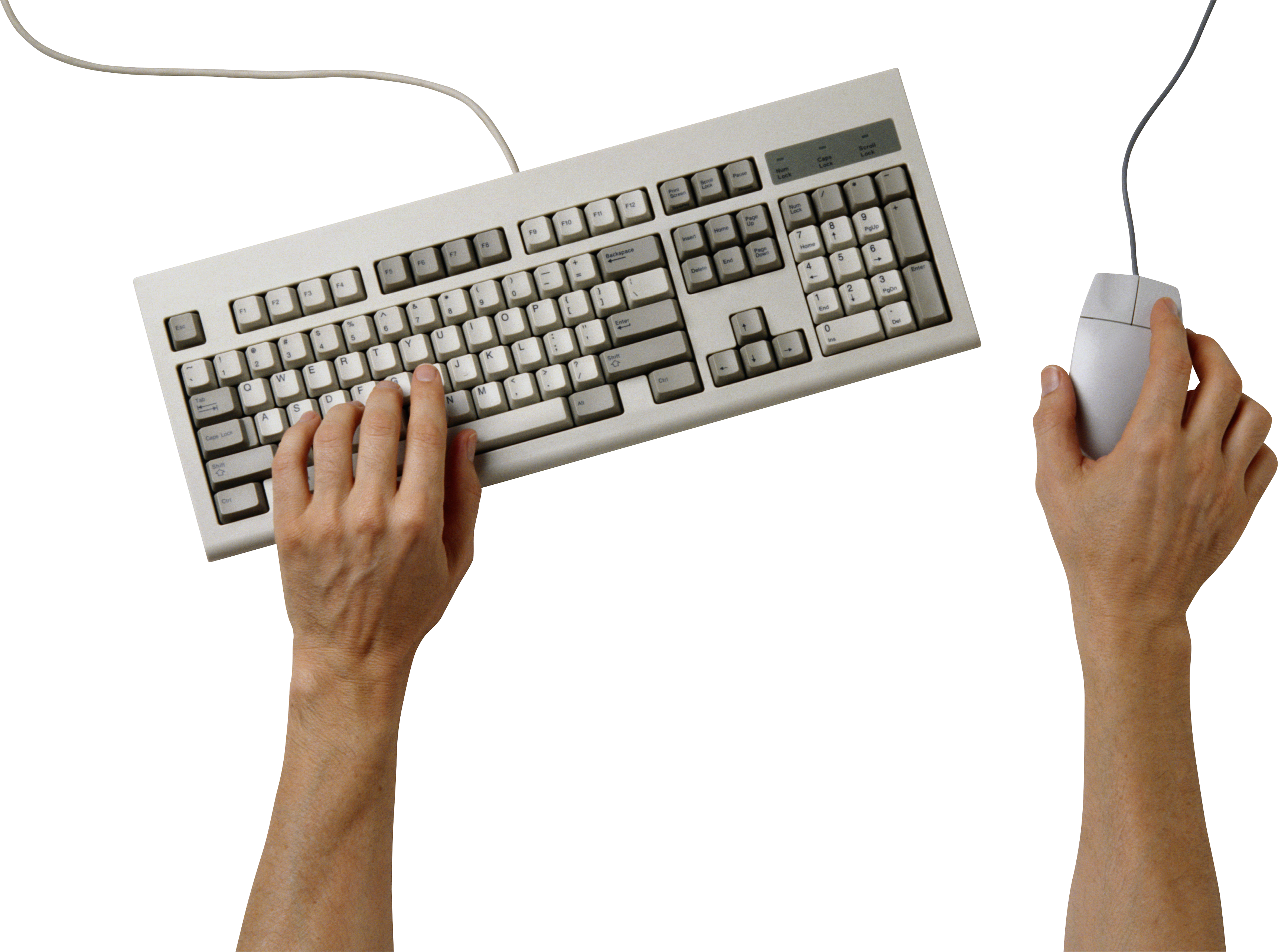 Hands on png image. Keyboard clipart word processing
