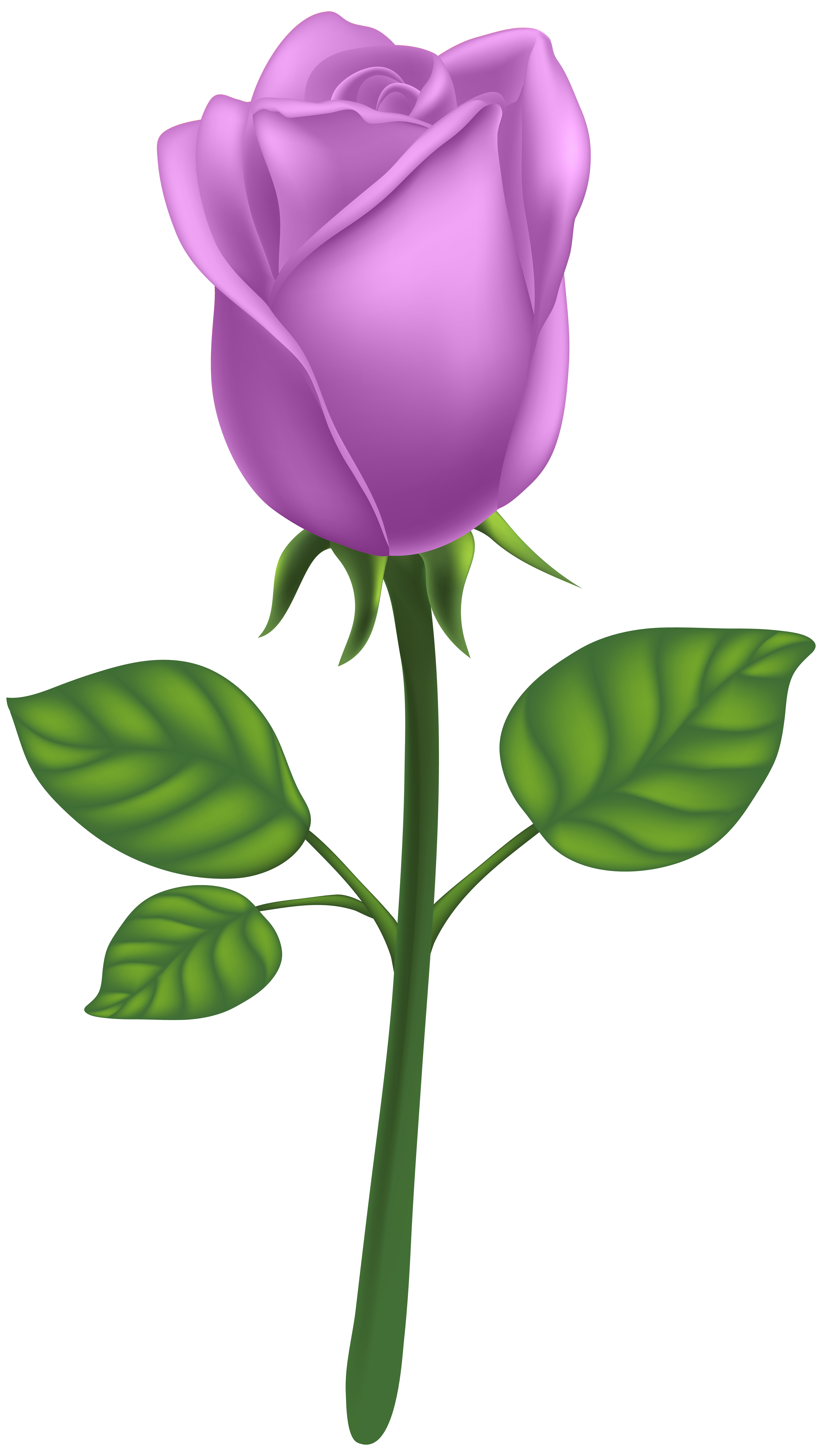 Keys clipart purple. Deco rose png clip