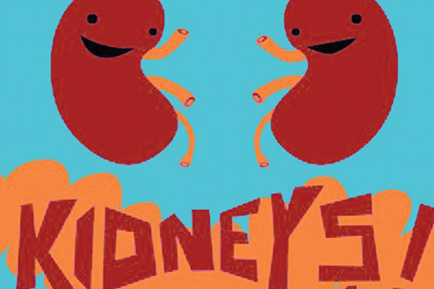 Kidney clipart fun. Functions importance of functioning