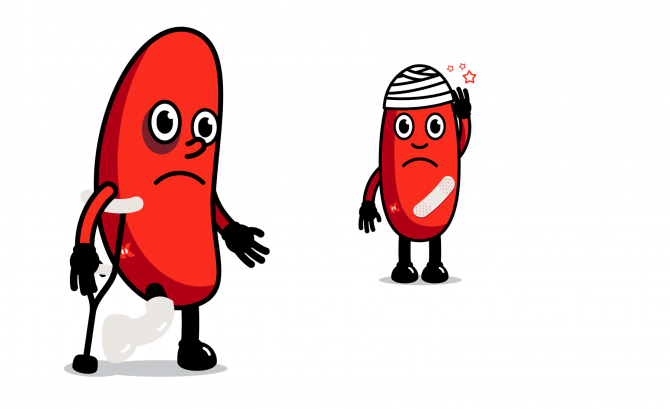 Kidney clipart healthy kidney. Acute injury health australia