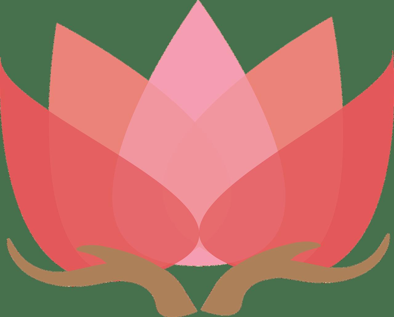 Lotus clipart esthetician. Energy medicine reiki hands