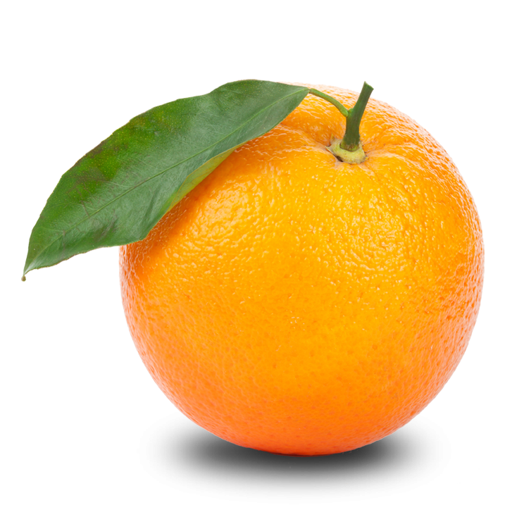 Kindness clipart fruit. Orange jokingart com download