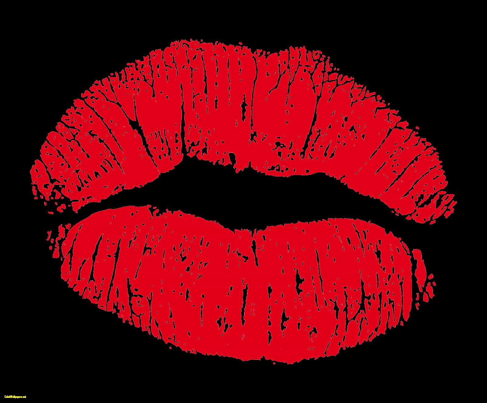 Amazon vaseline therapy tin. Lip clipart lip balm