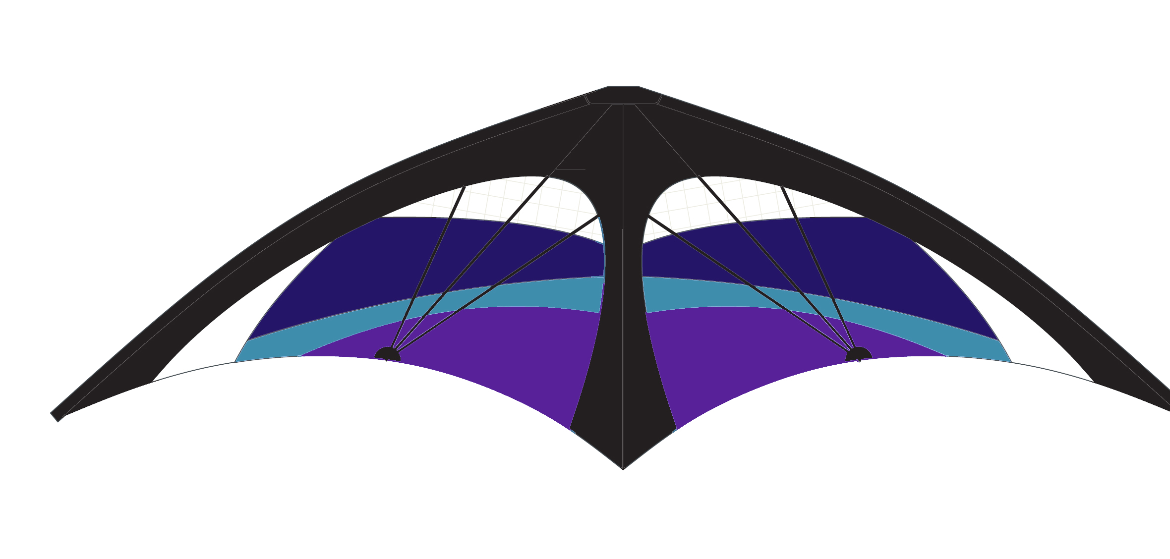 Kl phantom stunt blue. Kite clipart purple