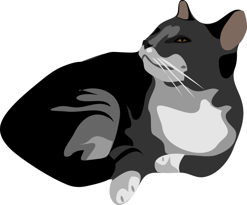 Collection of free black. Kitten clipart 10 cat