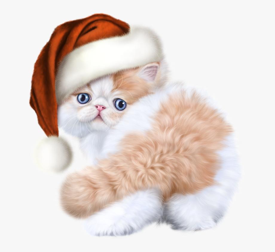 Kittens clipart 5 kitten. Cat cliparts cartoons jing