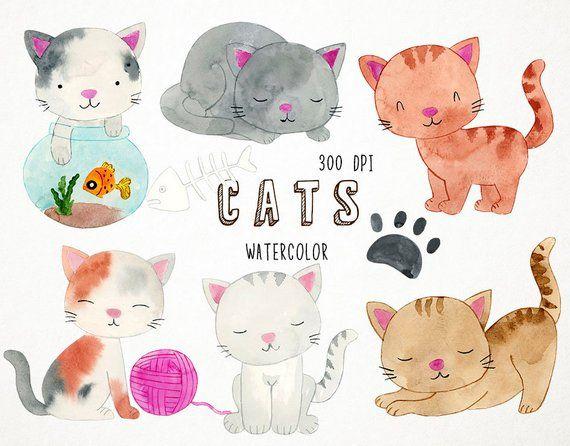 Watercolor cats clip art. Kitten clipart baby kitten