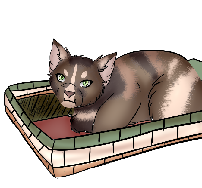 Bean in a by. Kitten clipart basket painting