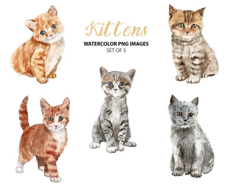Watercolor cat clip art. Kittens clipart 5 kitten