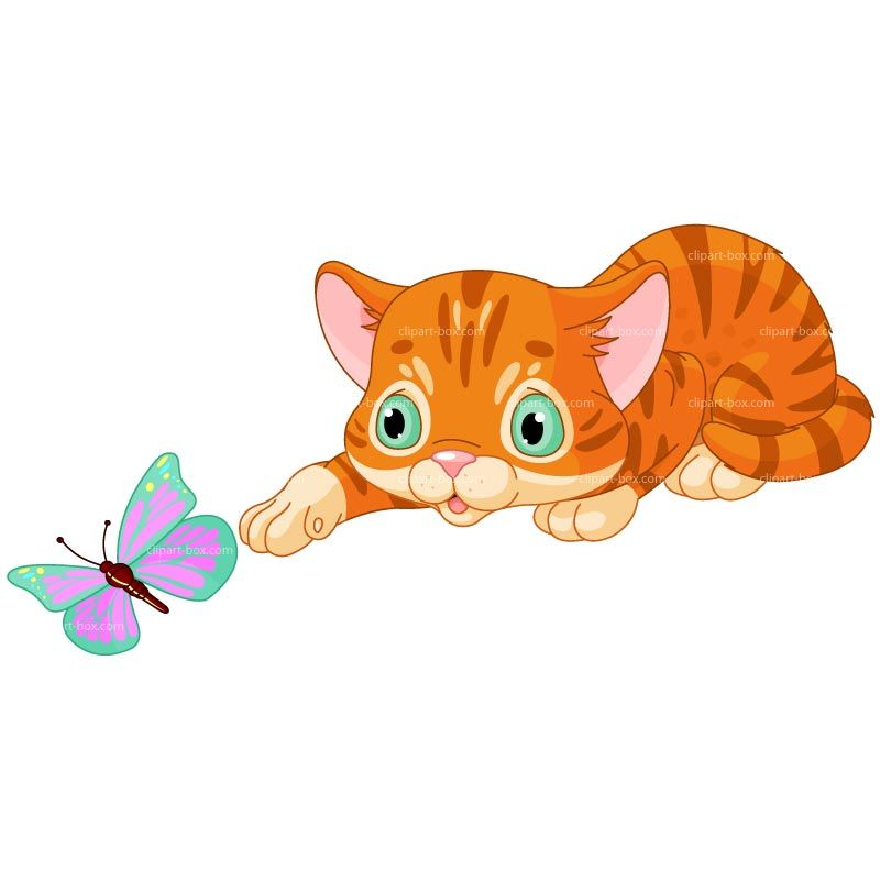 Playing with royalty free. Kitten clipart butterfly