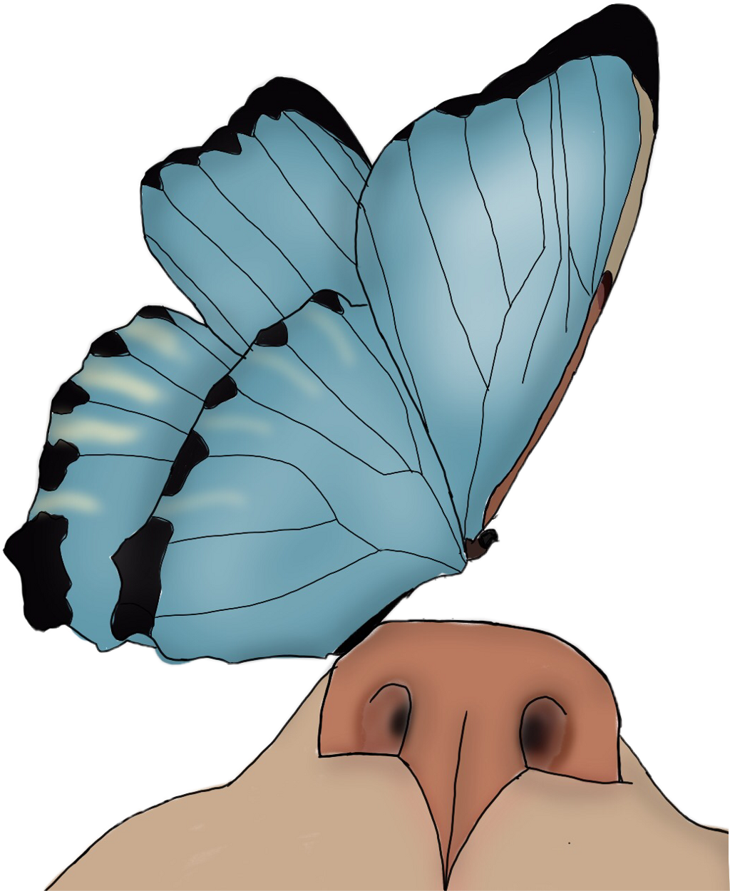Butterflies cat cute freetoedit. Kitten clipart butterfly