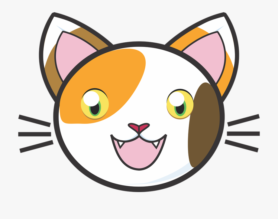 Kitten clipart calico. Cat kitty cute adorable