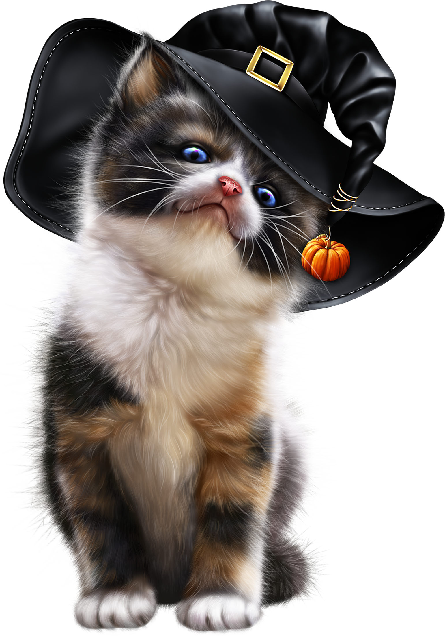 ca ac ff. Kittens clipart calico